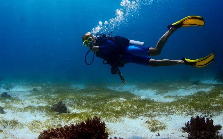 Plongée et snorkeling à Sifnos